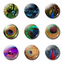 Peacock Refrigerator Sticker Magnetic Peafowls Fridge Magnet Memo 30MM Round Glass Gemstone Home Dec