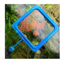 Aquarium Square Food Feeder