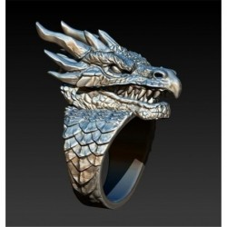 Stainless steel ring with a...