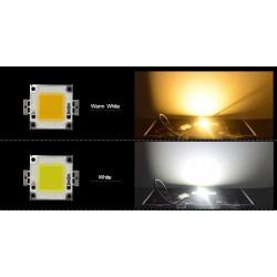 Geïntegreerde LED Chip Lamp 10W - 20W - 30W - 50W - 100W