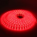 SMD 5050 AC 220V 60 LED Waterproof Flexible Led Strip Light & Power Plug