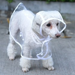 Hunderegenmantel Transparent
