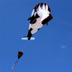 Dolphin - frameless kite with line