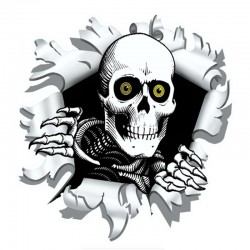 Car sticker with skull 15.9 * 15cm